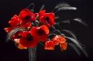 Горячие цветы
