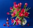 Зимние тюльпаны