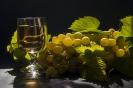Винобрание. Энергия солнца