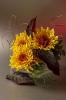 О желтых хризантемах