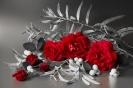 O dzikiej róże