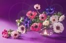 Anemony - muzyka wiosny