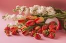 Biel i czerwień maja