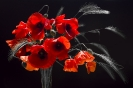 Gorące kwiaty