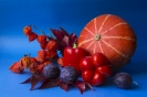 Pomaraczowe w granatowym