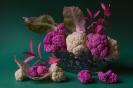 Różowe marzenia kalafiora