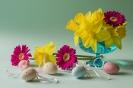 Wiosenna radość