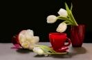 Z białymi tulipanami