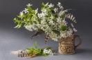 Zakopiańska wiosna