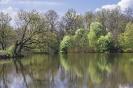 Cichy wiosenny dzień