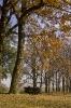 Jesień dla dwójga